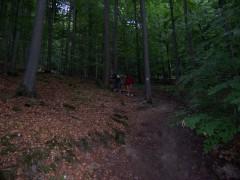 Gyalogtúrák :: Pálháza 2006