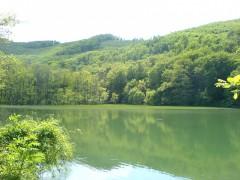 Gyalogtúrák :: Szalajka völgy, Szilvásvárad :: DSC00338.jpg ::