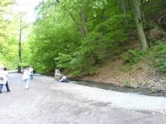 Gyalogtúrák :: Szalajka völgy, Szilvásvárad :: DSC00350.jpg ::