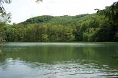 Gyalogtúrák :: Szalajka völgy, Szilvásvárad :: 100_5478.jpg ::