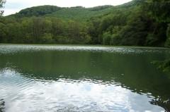 Gyalogtúrák :: Szalajka völgy, Szilvásvárad :: 100_5492.jpg ::