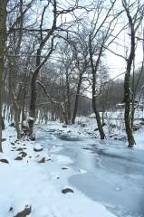 Teljesítménytúrák :: Téli Mátra 2011 :: P1100323.jpg ::