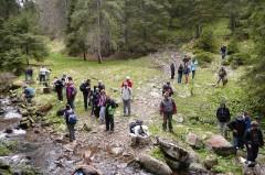 Gyalogtúrák :: Szerenád vízesés