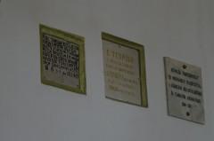 Bringatúrák :: KPSE bringatúra 20. szakasz - Berettyóújfalu-Debrecen :: P1140928.jpg ::