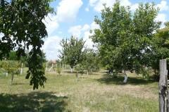 Bringatúrák :: KPSE bringatúra 20. szakasz - Berettyóújfalu-Debrecen :: P1140961.jpg ::
